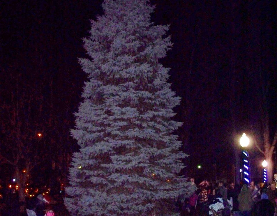newark christmas tree